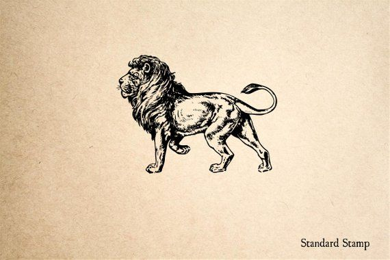 Lion Rubber Stamp  2 x 2 inches | Etsy