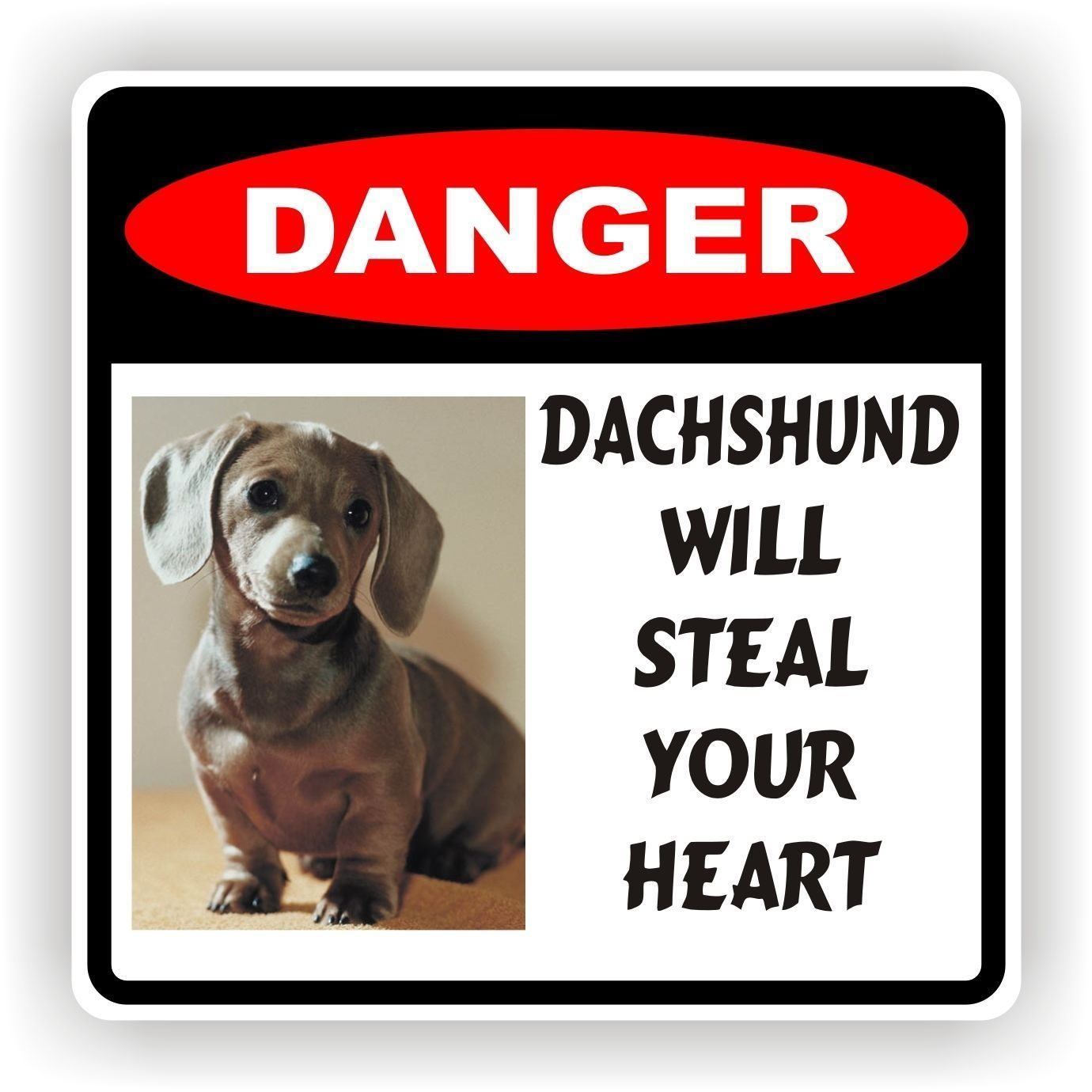4.99 dachshund Steal Heart Decal Sticker Pet Dog ebay