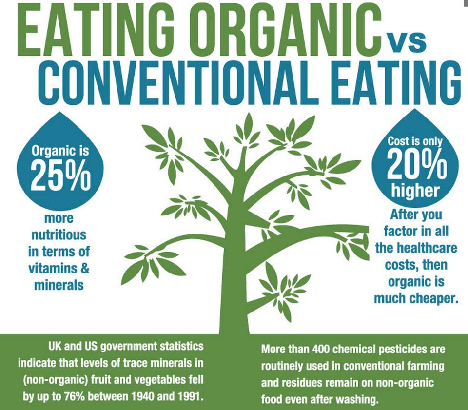 Organic Baby Food Brands