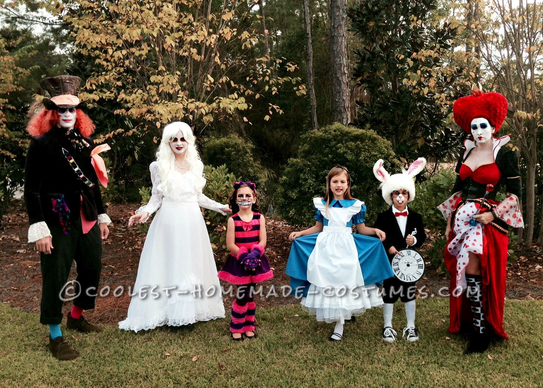 awesome family of six alice in wonderland group costume | coolest