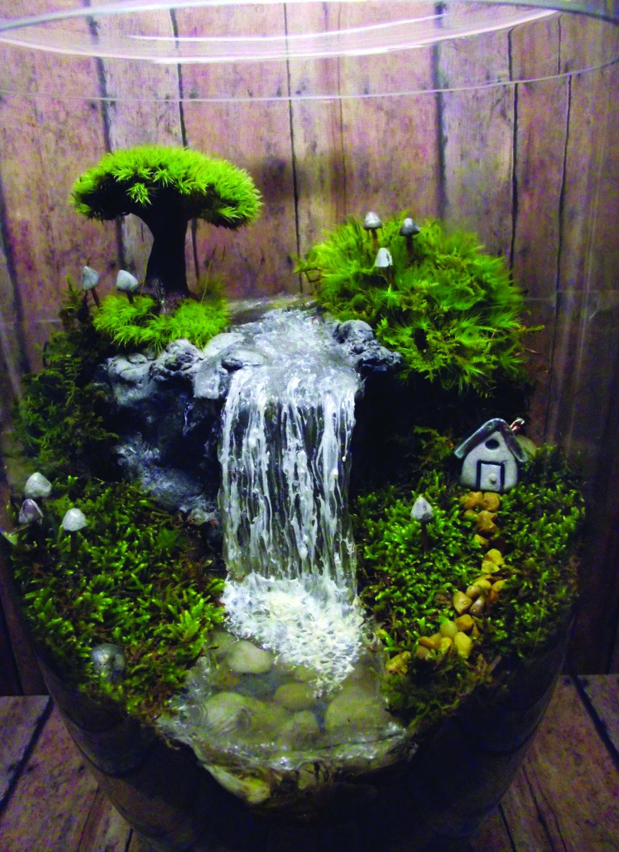 Take Your Pick! The Top Miniature Fairy Garden Design Idea