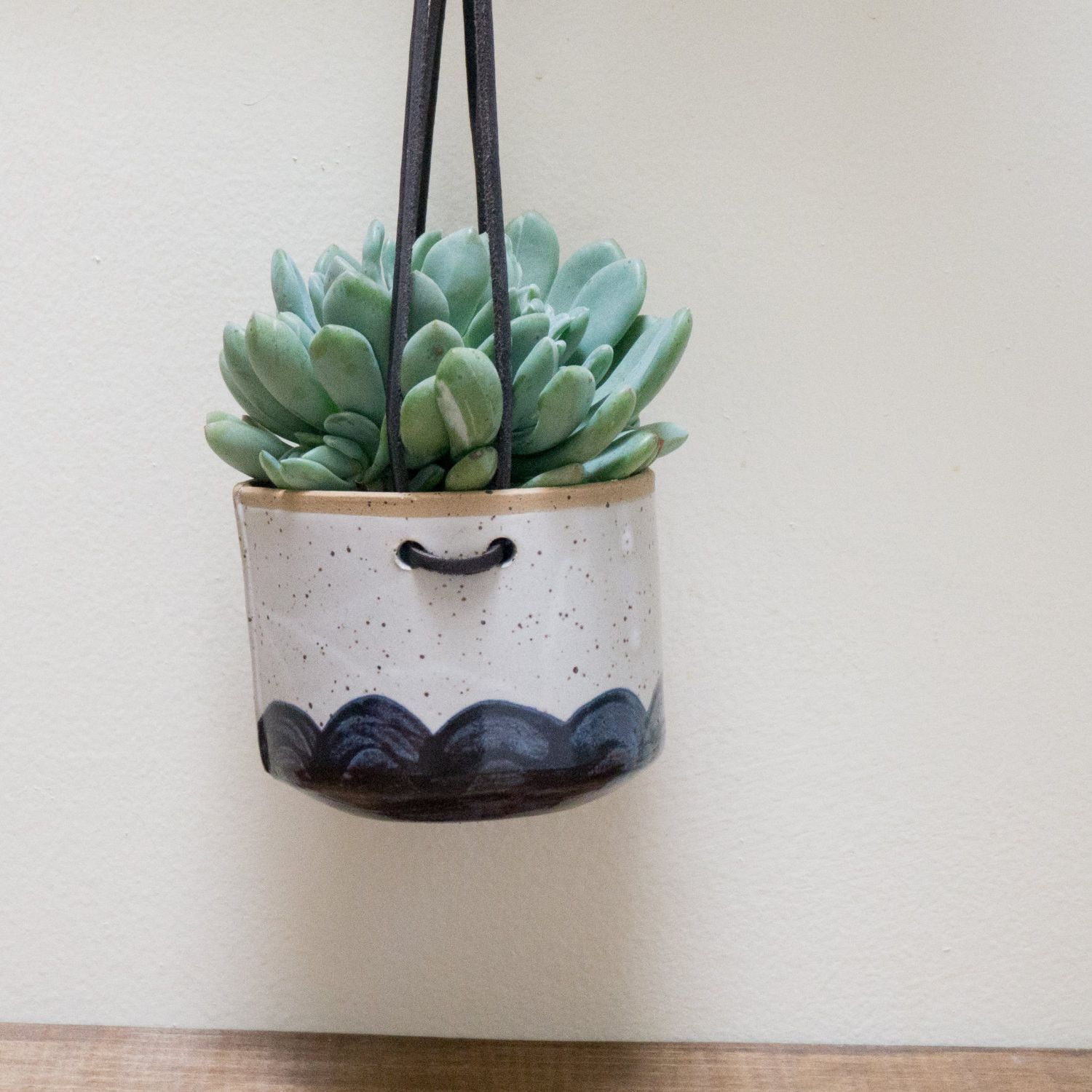 Hanging Wall Planter for Succulents Pottery plant pot
