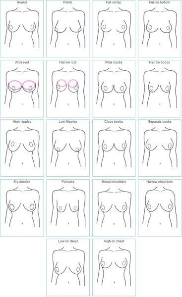 Boob Chart : chart, Contact, Support, Chart,, Calculator,, Correct, Sizing
