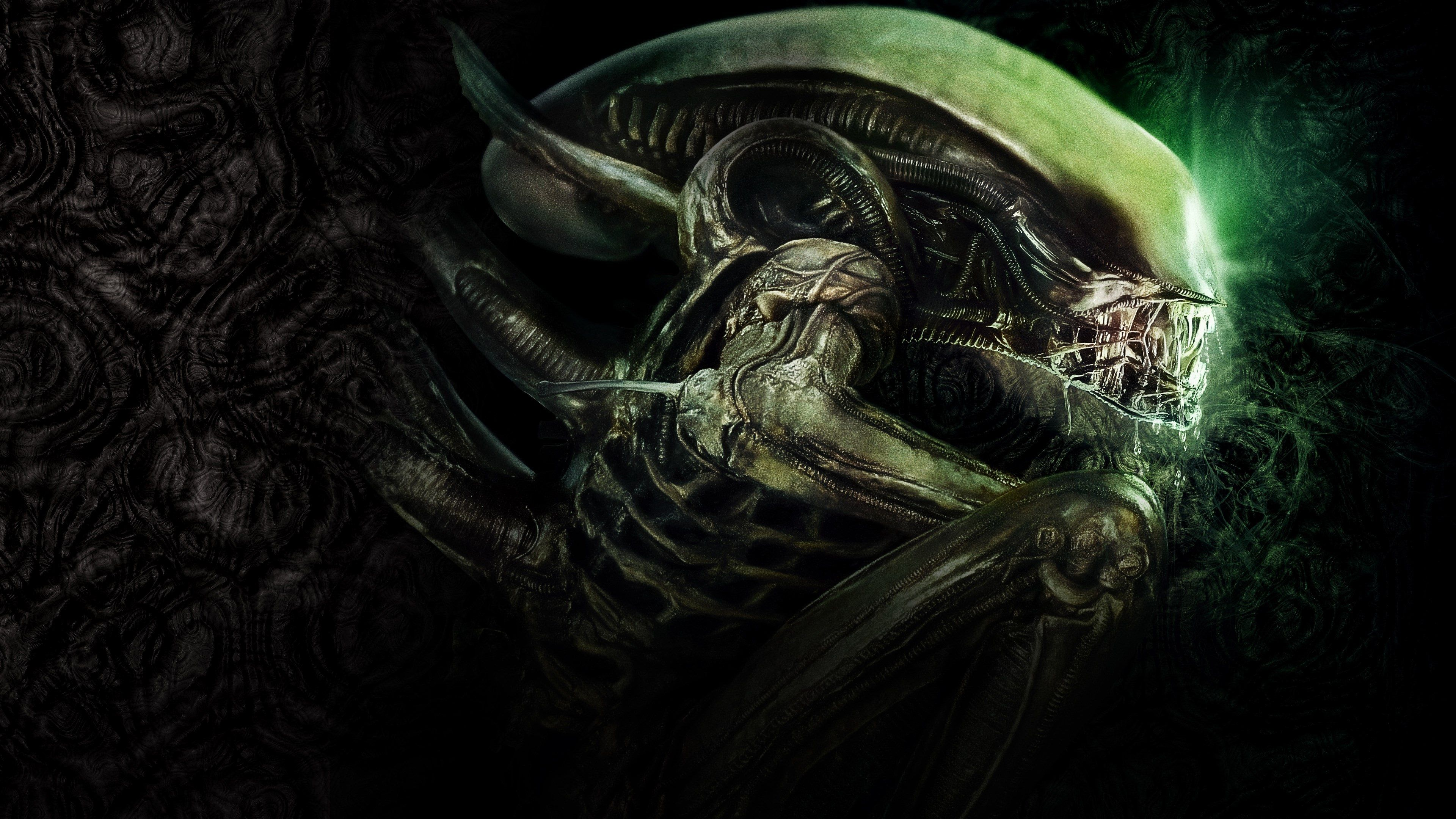 3840x2160 Alien 4k Free Picture 4k Wallpapers For Pc Wallpaper Pc 3d Wallpaper For Pc