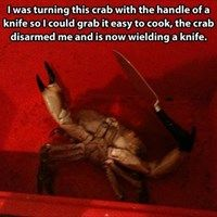 Pincers and a Knife?  Great!