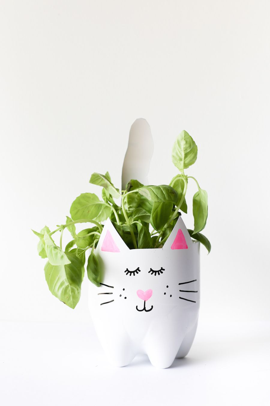 Turn an empty soda bottle into an adorable kitty plant planter for catnip, herbs, or even a cactus or succulent! Easy to make and so cute! // Salty Canary // #ad
