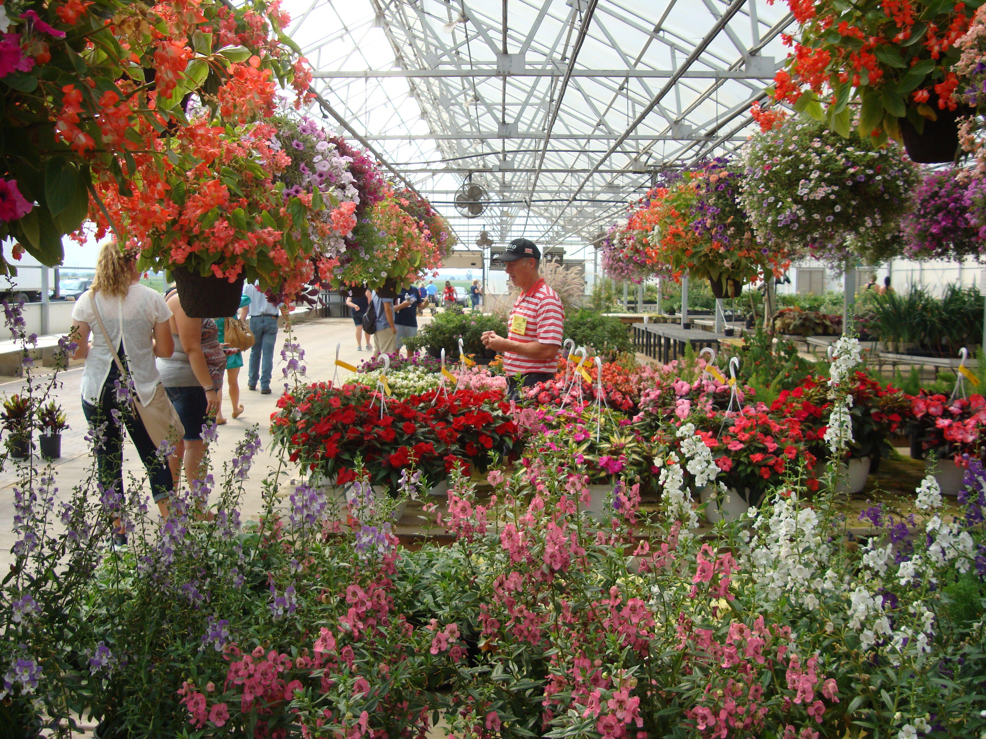 Gensler Gardens, Davis Junction, IL | Gensler Gardens | Pinterest