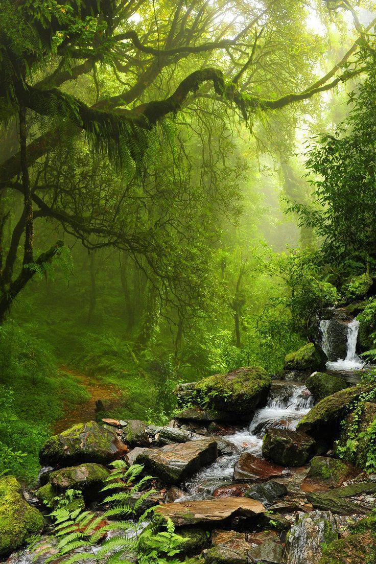 Belize Nature Photography Landscape Nature Pictures