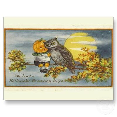 the owl and the pumpkin