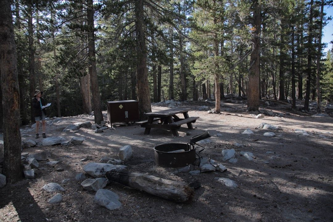 Mammoth Lakes Camping – Which Campgrounds Have The Most Campsites With  Privacy?