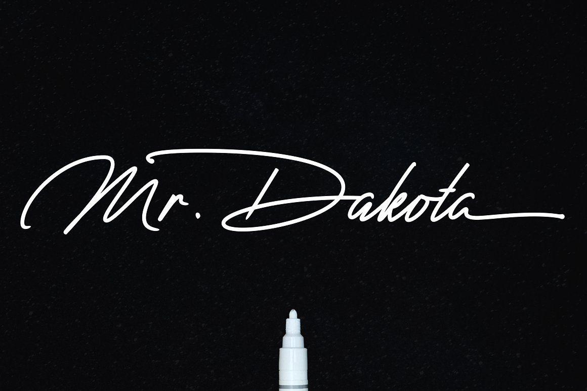 Mr dakota business cards and fonts