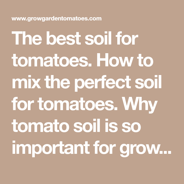 The Best Soil For Tomatoes How To Mix The Perfect Soil 400 x 300