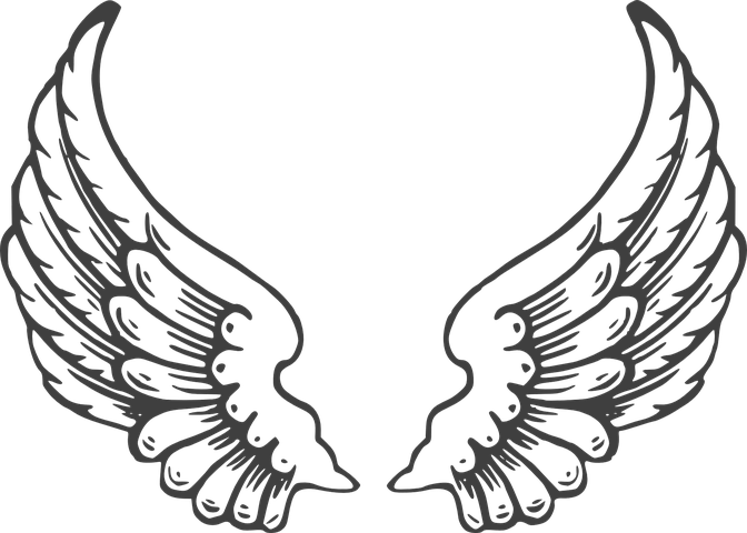 Free Image On Pixabay Wings White Wing Isolated Angel Wings Clip Art Angel Wings Tattoo Stencil Wings Drawing