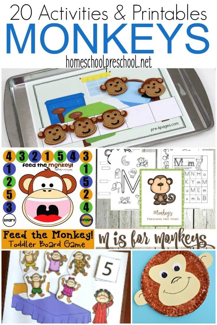 20 Exciting Monkey Activities for Preschoolers To Do ...