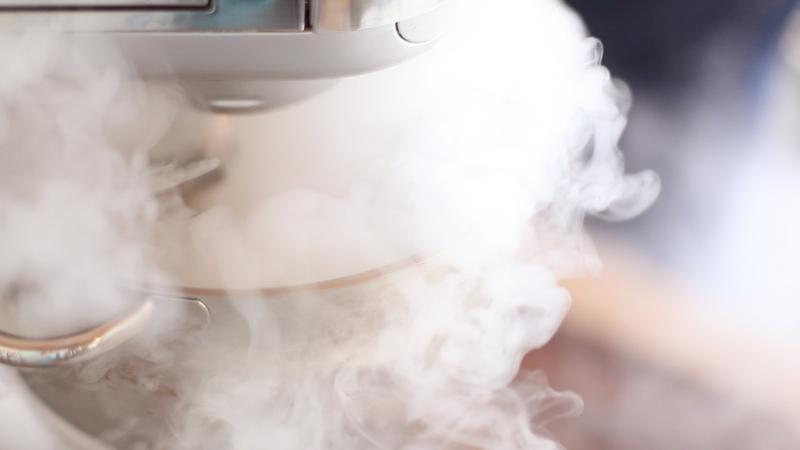 Liquid Nitrogen Churned Ice Cream