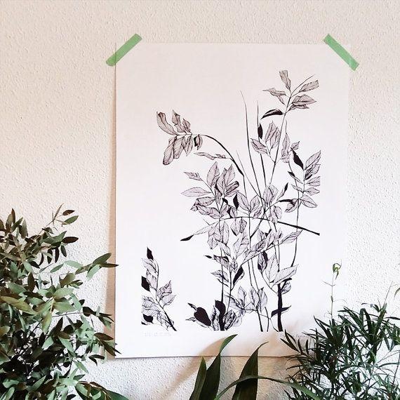 affiche illustr e plante verte dessin du par monocotyledone flower illustration. Black Bedroom Furniture Sets. Home Design Ideas