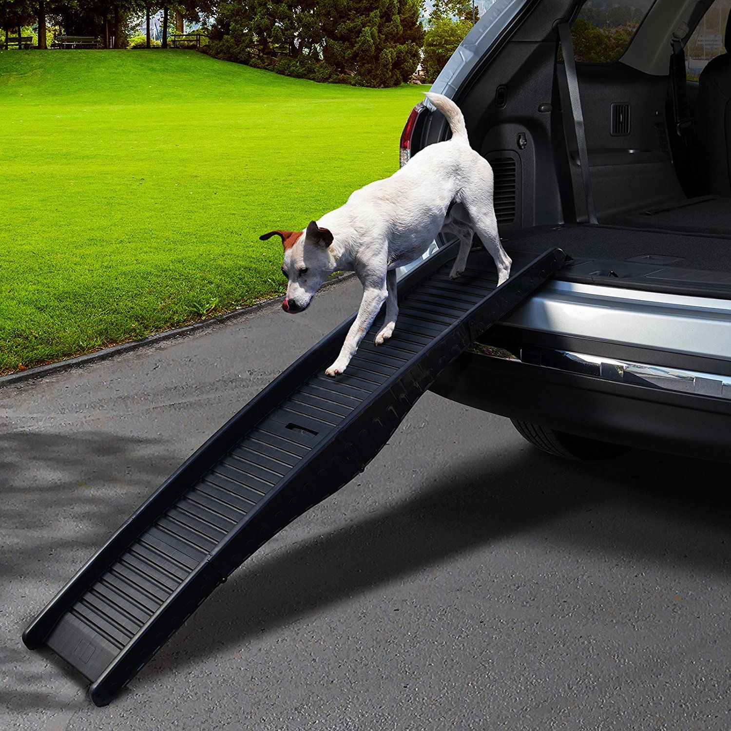 Save 44 today on a car ramp for your seniordog! DogMom