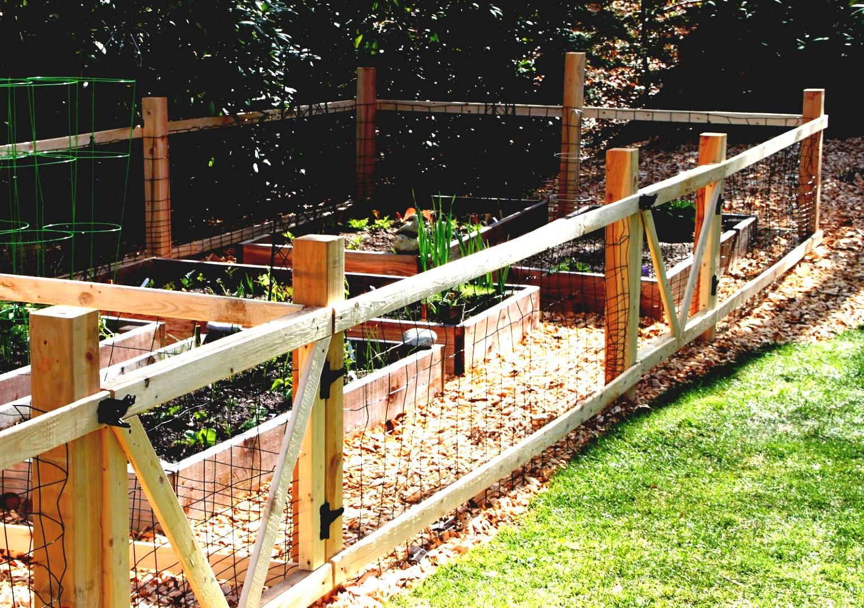 How To Create Vegetable Garden Fence Ideas Rabbits Homelk Com