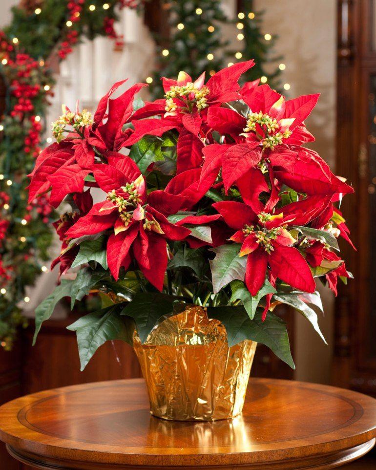 Large Premier Silk Poinsettia Plant to Decorate Christmas