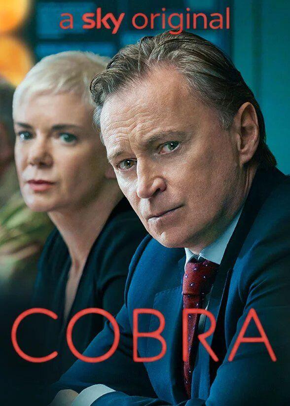 Cobra 2020 Watch Free Online Divertimento