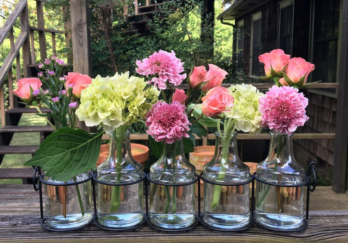 Flowers brighten a windowsill with images simple bud