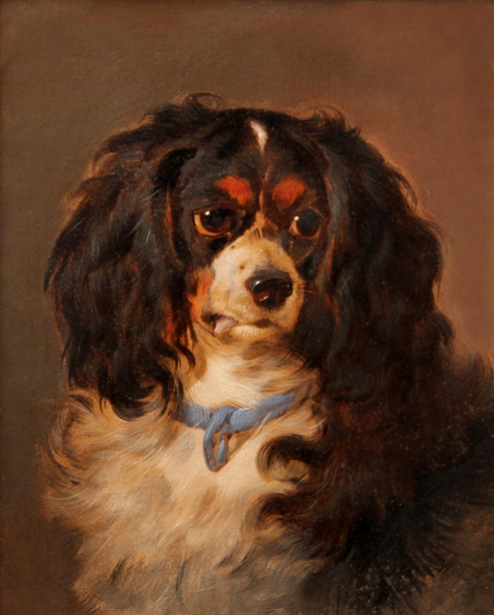Category Individual Hamshere Gallery Specialists In Canine