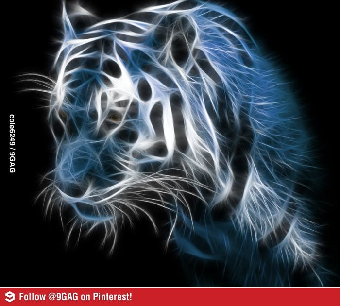 Really Cool Tiger Wallpapers