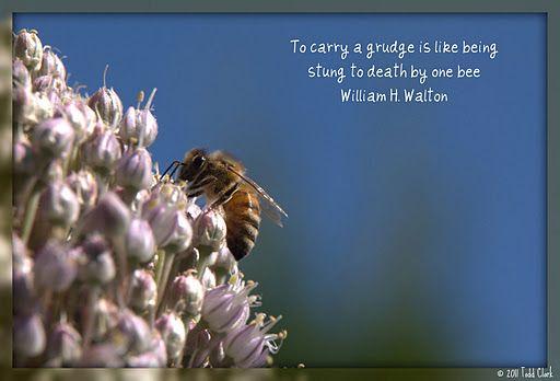 Set the bee free...