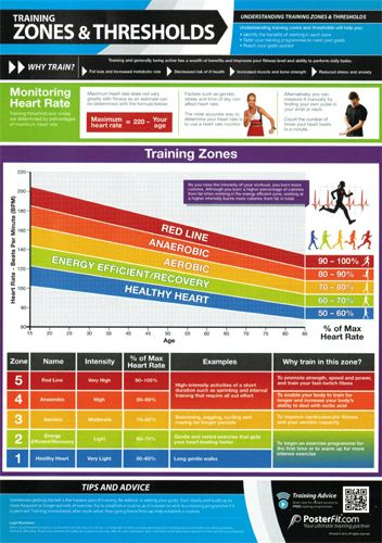 Training Zones and Cardio Thresholds Professional Fitness Training - heart rate chart template