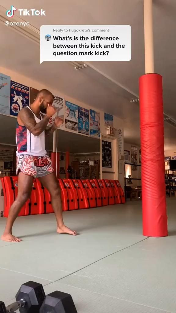 Martial Arts Muay Thai Karate Taekwondo Kick Video In 2020 Martial Arts Workout Martial Arts Self Defense Martial Arts