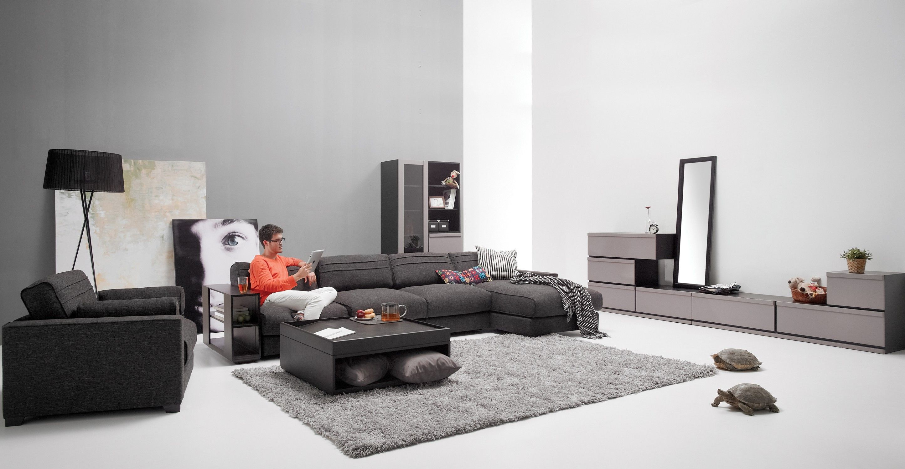 Vani Modular 2 Seat Right Sectional With Chaise