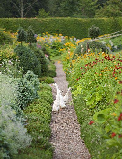 Birkhall Clivenichols Com Garden Landscape Design Garden Inspiration Cottage Garden