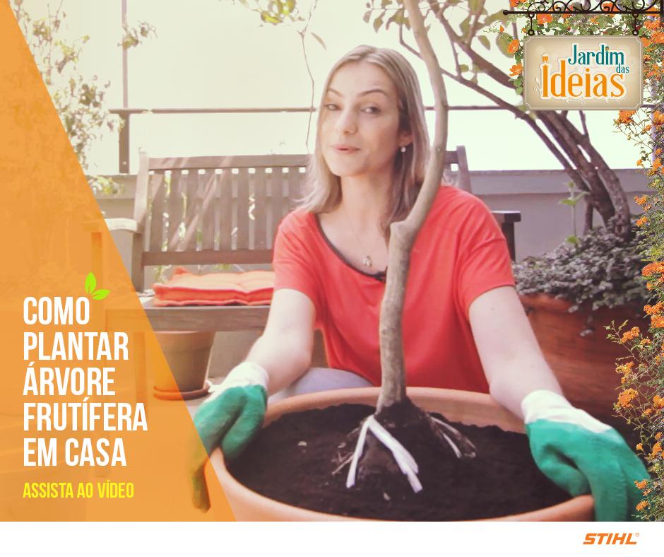 O Jardim das Ideias ensina a plantar árvores frutíferas em vasos. Vem ver e nos conte o que você achou! http://goo.gl/bakmu5