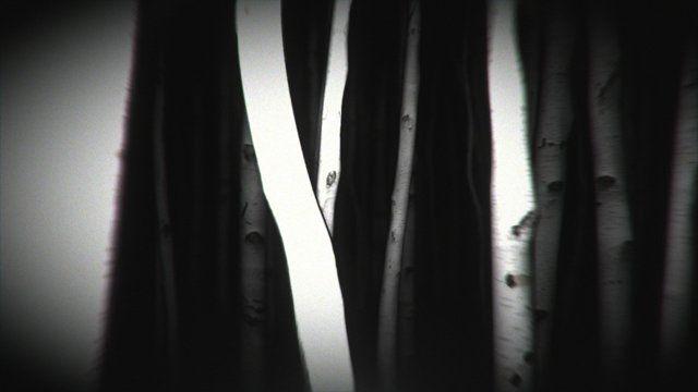 VIDEO QUE REUTILIZO HUGO La Féline, La nuit du rat. (Dir : Hugo Arcier)