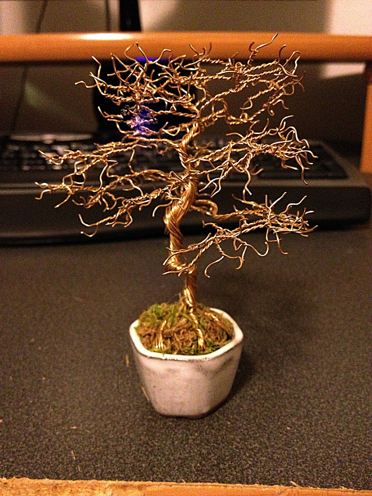Peachy During My Spare Time I Make Bonsai Trees Out Of Copper Wire Thought Wiring Digital Resources Funapmognl