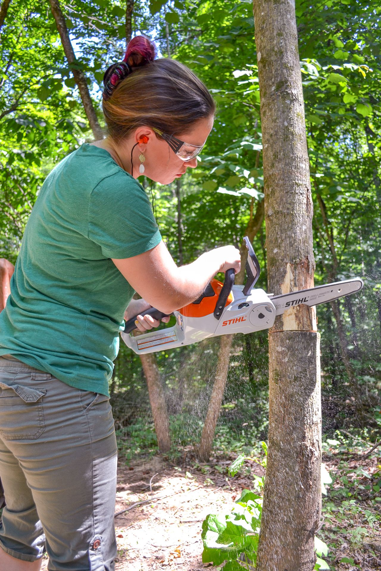 How To Cut Down A Small Tree Favorite Diy Bloggers
