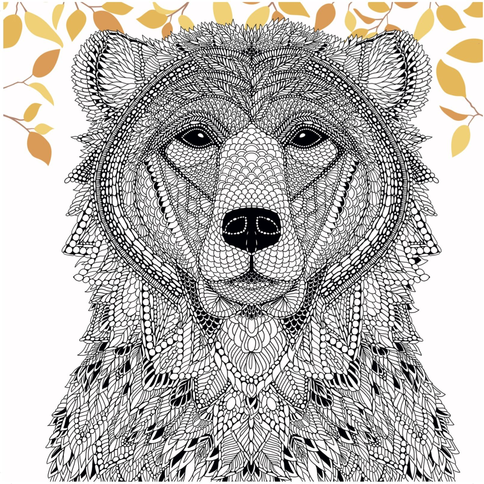 Publishers for adult coloring books - A Bear From The Menagerie Free Adult Coloring Page Craftfoxes Davlin Publishing