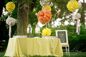Lemonade table for a Spring or Summer outdoor wedding