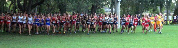 And they're off!