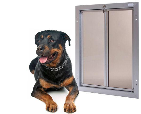 Extra Large Dog Door Httprelaxingdoggyproduct Category
