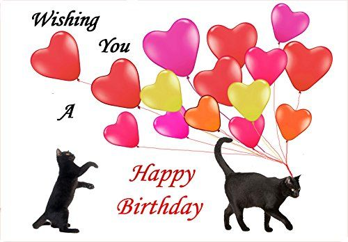 Cat Birthday Greeting Cards Black Cats and Balloons Birthday – Cat Birthday Card