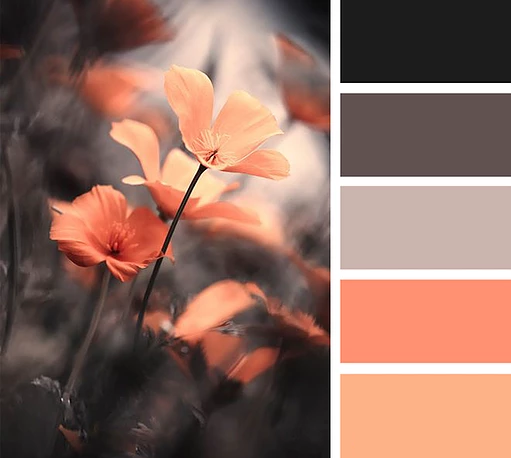 Try It Pin To Paint Orange Color Schemes Grey Color Palette