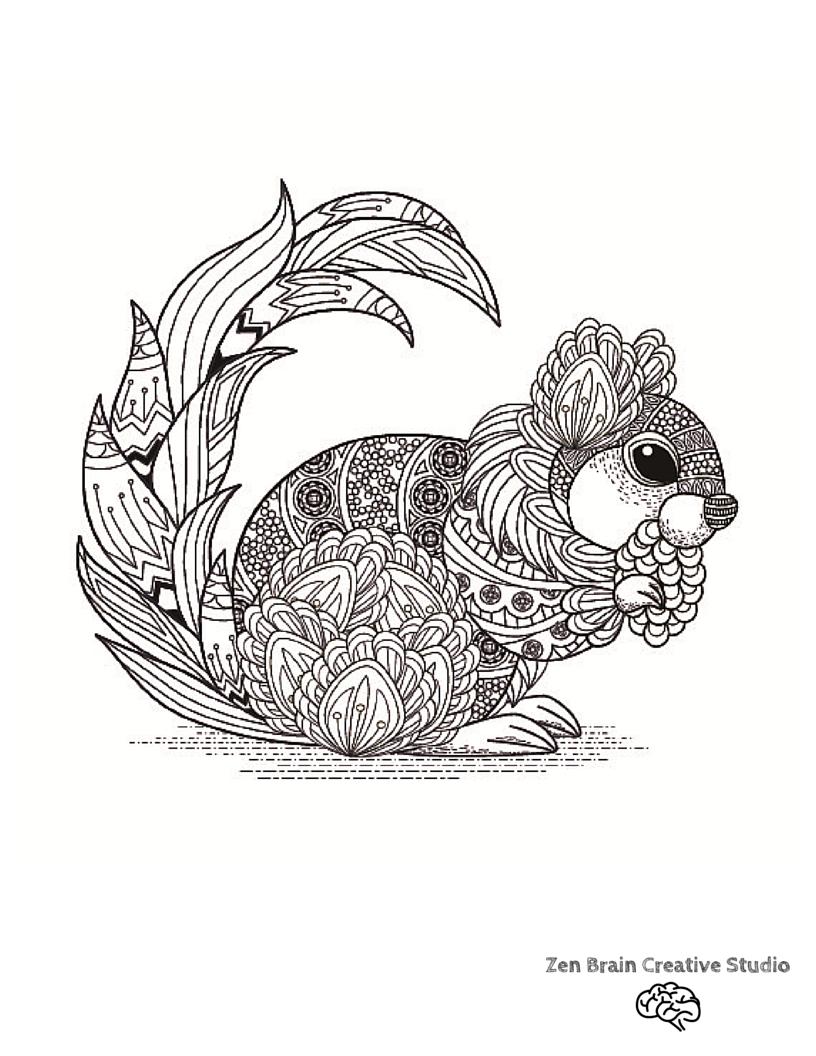Squirrel Digital Coloring Page
