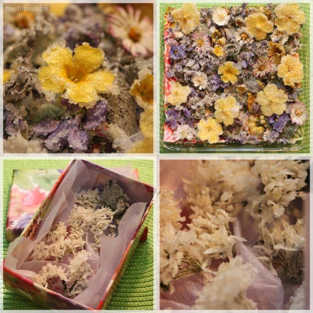 Kandierte Blüten   Rezepte rund ums Backen von Muffins, Cupcakes, Kuchen &Co. auf https://nachtbacken.wordpress.com/2015/05/14/kandierte-blueten