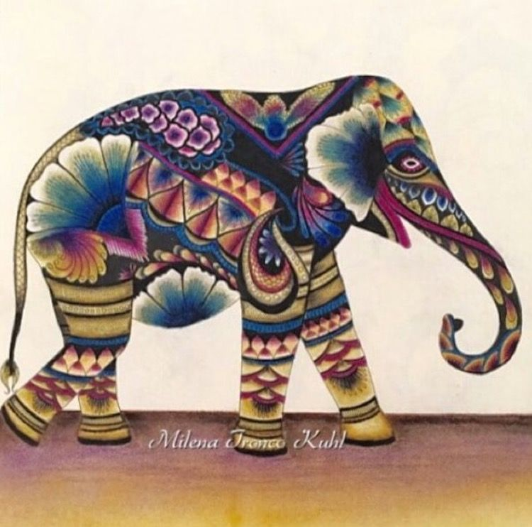 Image Result For Animal Kingdom Colouring Book Hippo Elephant