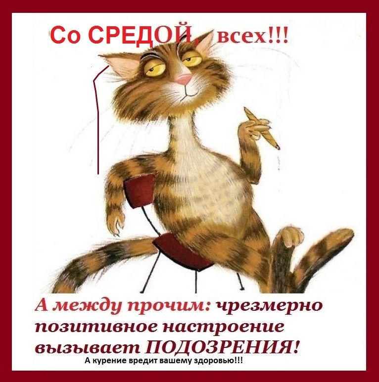 Kartinki Dobroe Utro Sreda 36 Foto With Images Cat Urine