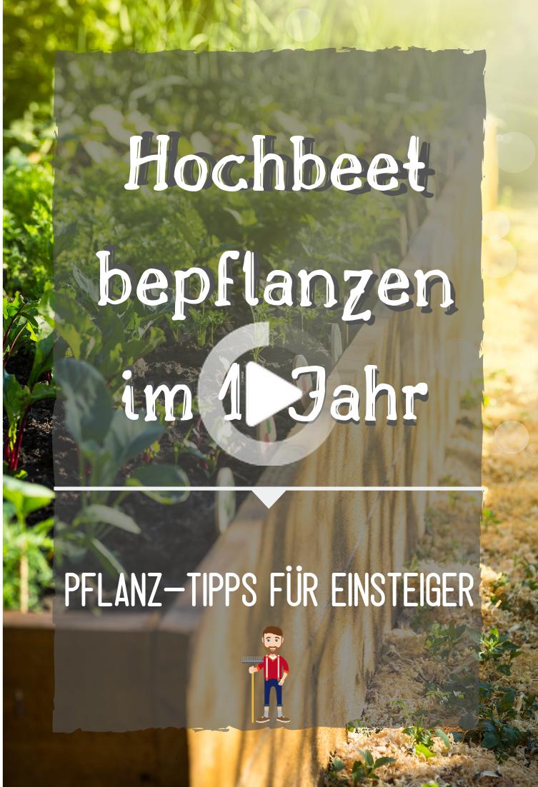 Hochbeet Bepflanzen Bepflanzung Fur Das 1 Jahr In 2020 Hochbeet Hochbeet Bepflanzen Bepflanzung