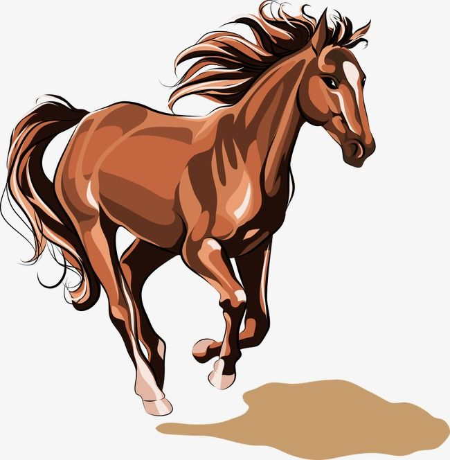 Horse Horse Clipart Horse Vector Cartoon Horse Png Transparent Clipart Image And Psd File For Free Download Horse Illustration Horse Artwork Animal Paintings