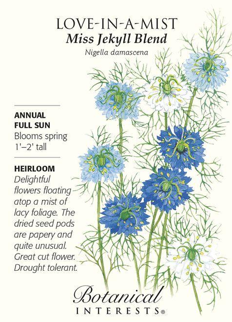Miss Jekyll Blend Love In A Mist Seeds 1 G Nigella Plants Planting Flowers Botanical