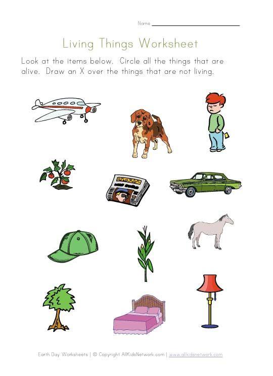 Living Things Worksheet Grade 1 Science And Social